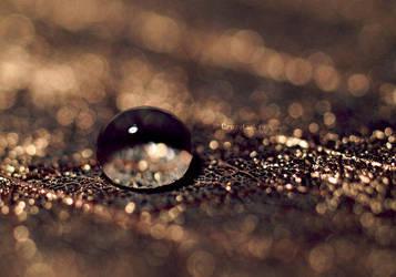 Gold dust by TasteOfLiquid