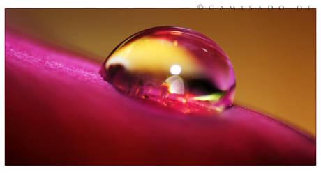 crystal water. by TasteOfLiquid