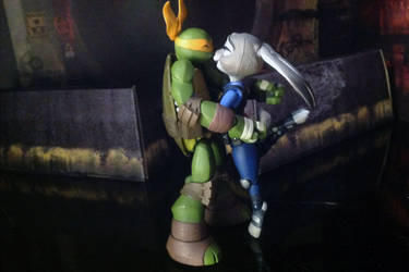 Rabbit and Turtle 3 by CandyKappa
