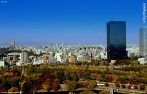 Osaka City by SkT0330