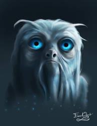 DOUGAL the Demiguise by Emmanuel-Oquendo