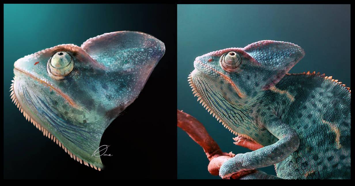Chameleon study by pavame-agarestia