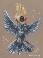 Admiral the Cockatiel by Ducks-with-Crayons