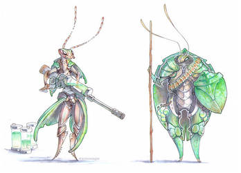 Ground Beetle and Shield Bug by drachenmagier