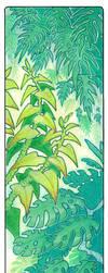 plants by drachenmagier