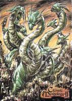 Hydra - Anthony Tan by Pernastudios