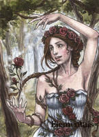 Elementals Sketch Card - Athina Konstantinidou 1 by Pernastudios