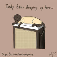 PAWS Indy likes sleeping here... I wonder why? 1/2 by zeravlam