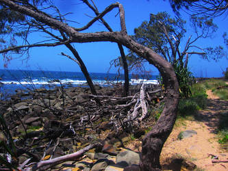 Angourie Head NSW by cheesyflips-stock