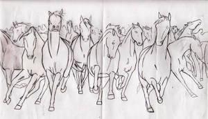Horse Herd Outline by DelightsJD