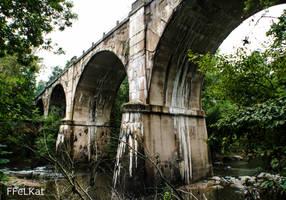 Abandoned train bridge by FFeLKat