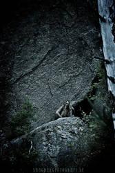 ...stone age II... by Sangberg