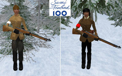The Civil war of Finland by Laserskater