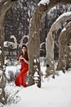 Woman in red dress in snowy rose garden by leversandpulleys