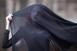 Black widow by Wan-Mei