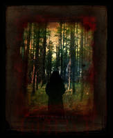 Tell me about the Forest by Gregoria