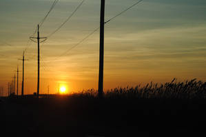Telephone Poles With A Sunsetting Scene by KelseyMariePhoto