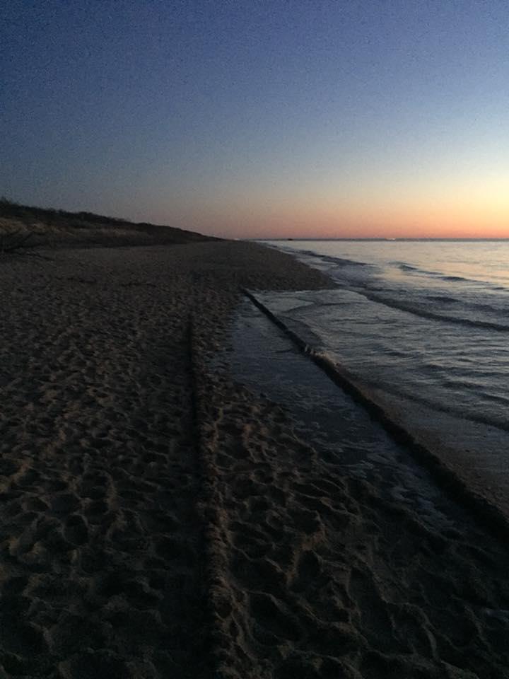 The Ghost Tracks of Higbee Beach by KelseyMariePhoto