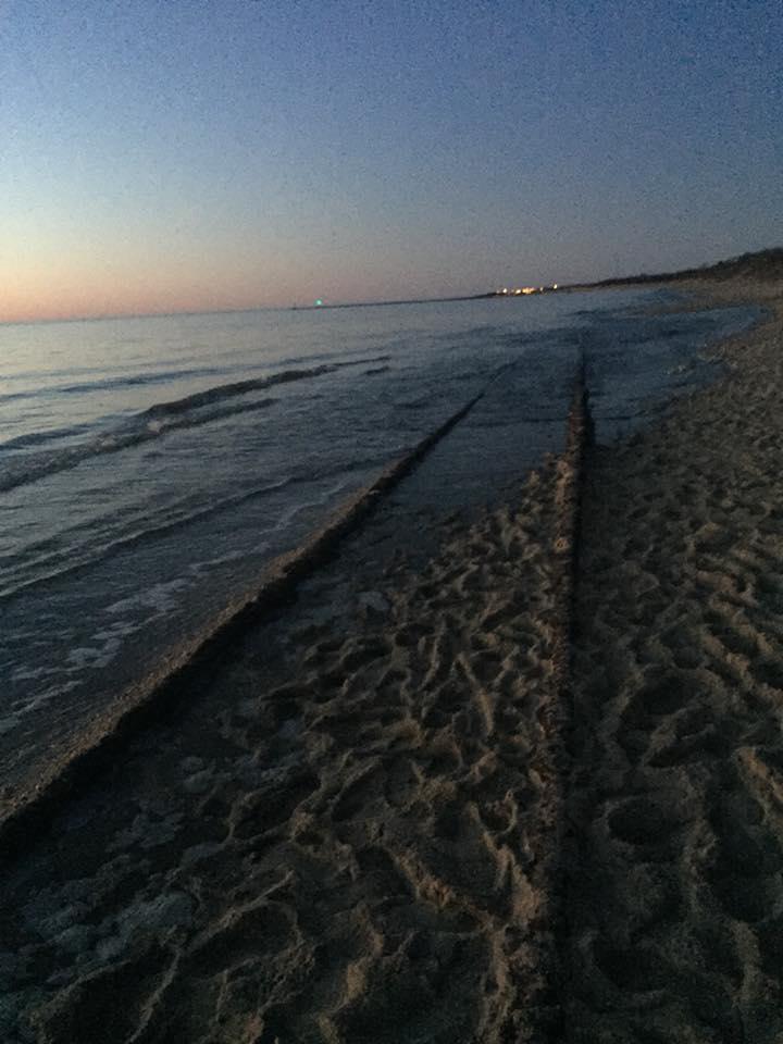 The Ghost Tracks of Higbee Beach ll by KelseyMariePhoto