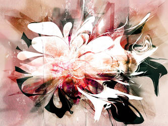 abstract flower by 3am