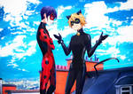 Miraculous Ladybug: Male!Ladybug and Chat Noir by Dessa-nya