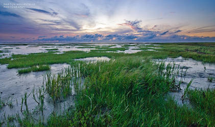 Sunset over Danish Marshes by Svision