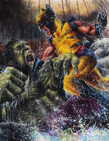 Hulk VS Wolverine by Twynsunz