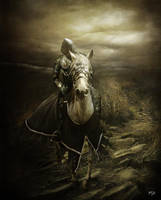 Le chevalier blesse by ThyC-Graphics