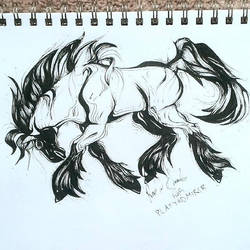 Manga Horse Design by Platyadmirer