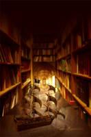 Librarian's Voyage by tamaraR