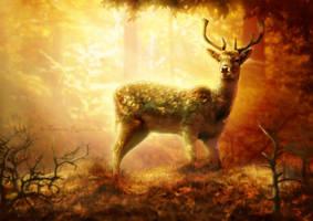 Wild by tamaraR