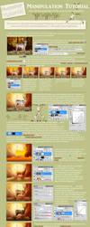 Photoshop Manipulation tutorial by tamaraR