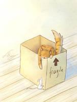Moving by tamaraR