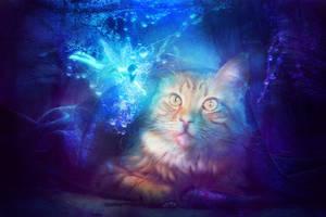 Dewdrop Fairy by tamaraR