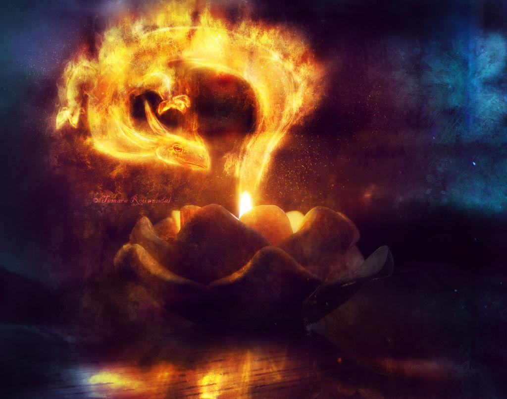 Dragon Candlelight by tamaraR