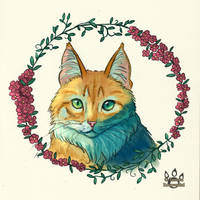 Flowers and cats by tamaraR