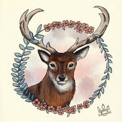 The Deer and The Wild Flowers by tamaraR