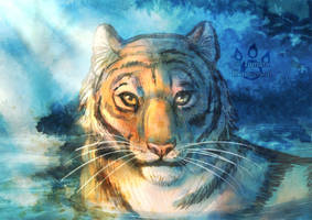Water Tiger by tamaraR