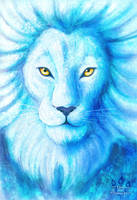 Lion of Ice by tamaraR
