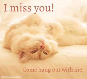 Miss you Pip card by tamaraR