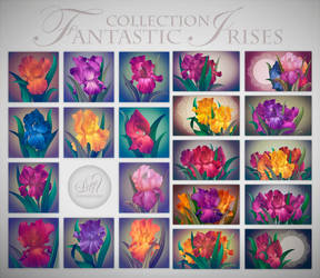 Collection Fantasy Irirses by Love-Kay