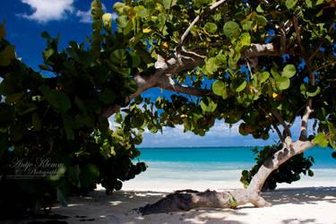playa esmeralda by Schnubu