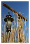 Lantern by pshope
