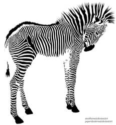 Zebra by PaperxLanterns