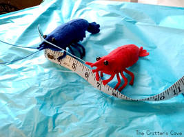 Wool Felt Shrimp Plushies by TheCrittersCove