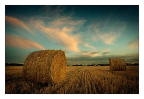 Harvest by Le-Kwi
