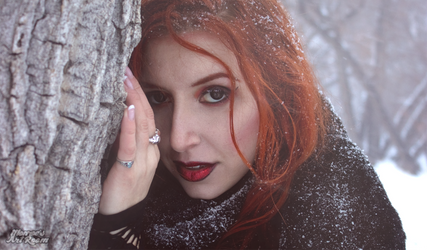 Snow Kitty by CrimsonDenizen