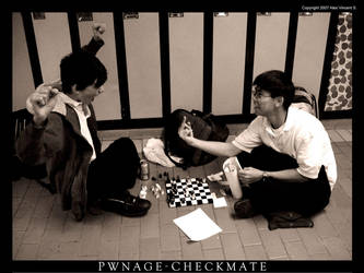 Pwnage - Checkmate by Fantiserare