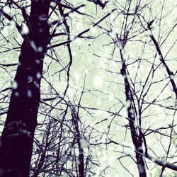 Reaching High by kimberlymeg