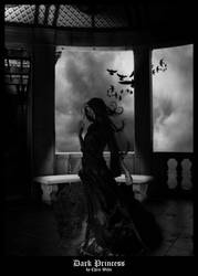 Dark Princess by King-Billy